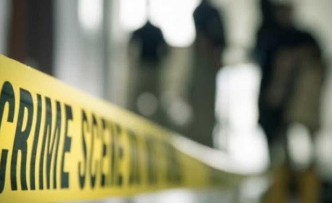 თიანეთში მამამ შვილი დანით მოკლა - დაკავებულია 81 წლის კაცი