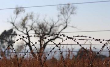 ოკუპანტებმა ქარელის მუნიციპალიტეტის სოფელ ტახტისძირის მიმდებარედ უკანონო ბორდერიზაცია განახორციელეს